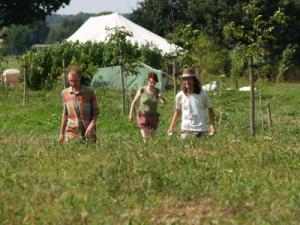 Food Forest Ketelbroek_phatch