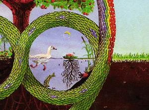 permacultura_logo_crop1_phatch