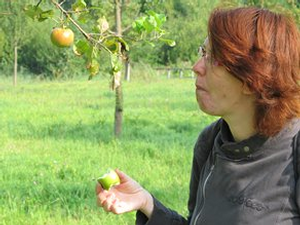 appels met maranke_phatch